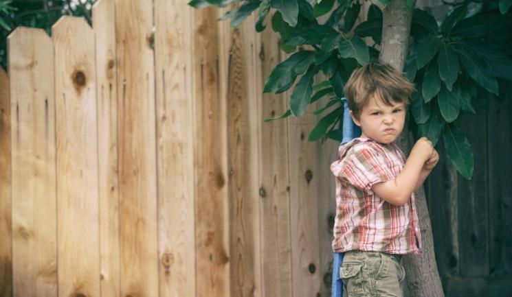 La science de la Pourquoi certains enfants sont méchants