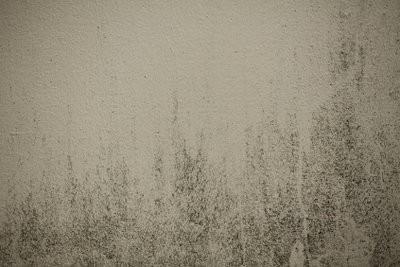 Murs humides - de sorte que le mur est placée à sec