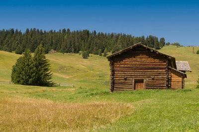 Cabane en bois: Créer un plan - comment faire