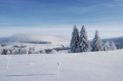 Réveillon du Nouvel An dans la Rhön - informatif