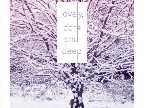 Into The Woods: 'Lovely, sombre et profonde »par Amy McNamara