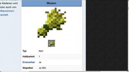 Minecraft: poulets d'alimentation - comment ça marche