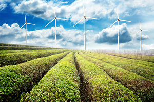 Investir dans les énergies renouvelables - solutions de placement et remarquable