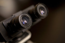 Microscope: Légende - informatif