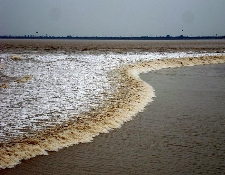 Mascaret: lorsque l'eau jaillit à contre-courant