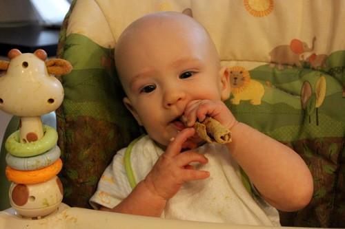 Adventures in Making Baby Food: Poire yogourt