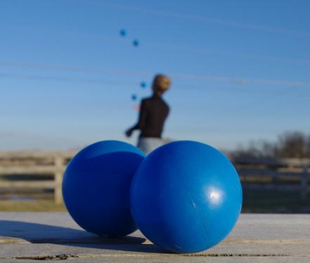 Les Juggle série: Elizabeth Chabner, médecin / PDG Best Friends for Life