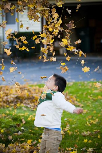 20 Photos belle chute, plus Comment prendre de superbes photos de vos enfants
