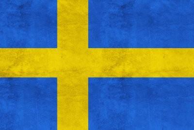 Schwedenplatte - avantages et les inconvénients de peser