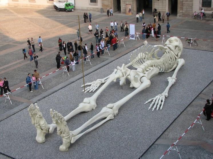 Calamita Cosmica: Le géant Voyager Skeleton