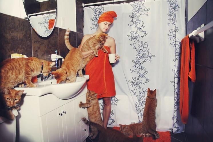 Ces superbes photos de «amoureux des chats fous» pourraient vous donner envie d'adopter plus de chats