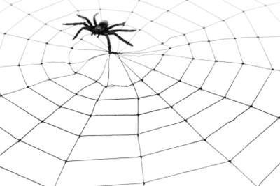 Faire des toiles d'araignée elle-même - de sorte gère un accessoire de costume