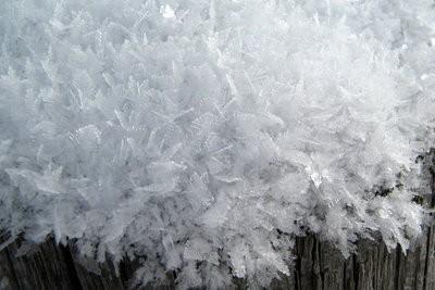 Snowflake préserver - afin réussit de