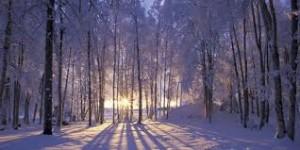 Top 10 des meilleures citations d'hiver 2014-15