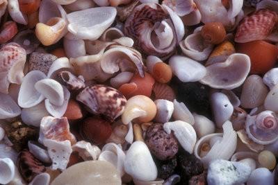 Faire des bijoux lui-même - comment cela fonctionne avec des moules