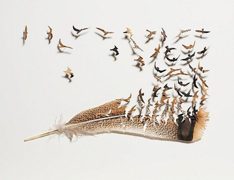 Belle Cutwork Feather par Chris Maynard