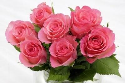 Signification des couleurs de rose - si vous payer le droit bouquet de roses