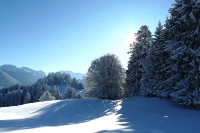 poids de la neige - de sorte que vous pouvez trouver sur de sorte qu'une charge de neige