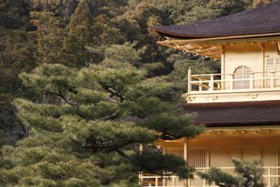 Un balcon joint bois - comment cela fonctionne: