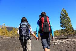Tenerife ou Gran Canaria?  - Un outil de prise de décision pour les vacances d'hiver